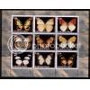 Russian Federation -  Republic  of Karakalpakia Butterflies  S/S MHN-NG