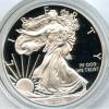 2013w Gem Proof Silver Eagle