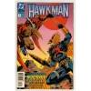 1993 Hawkman Comic # 3 – NM