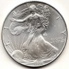1996 Gembu Silver American Eagle Key Date