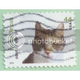 USA 2010 Calico Cat SC#4453 Used