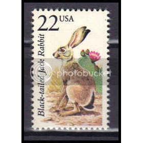 2305 22c Jack Rabbit Fine MNH Z3621