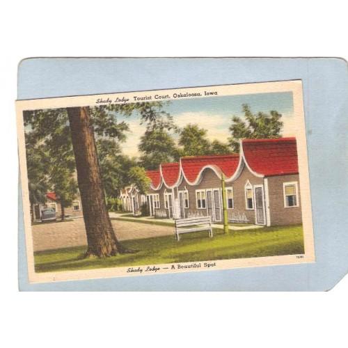 IA Oskaloosa Postcard Shady Lodge Tourist Court 1002 So 11th St Highway 63~140