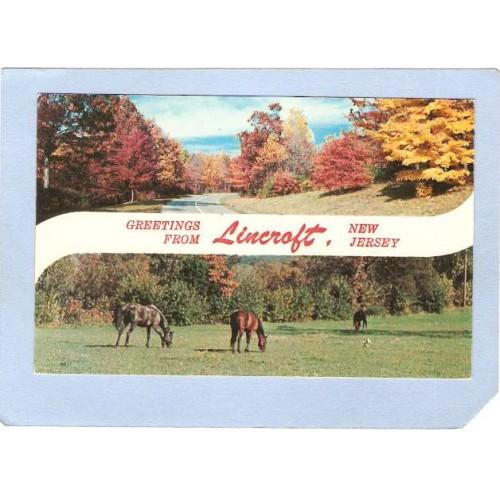 NJ Lincroft Greetings From Lincroft NJ 2 View nj_box4~1554