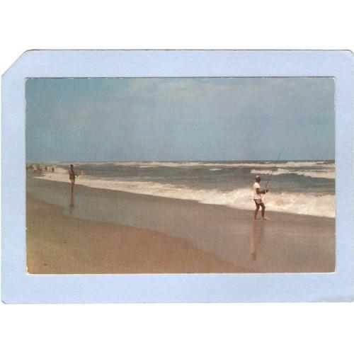 NJ Ocean Beach Surf Fishing nj_box4~1900