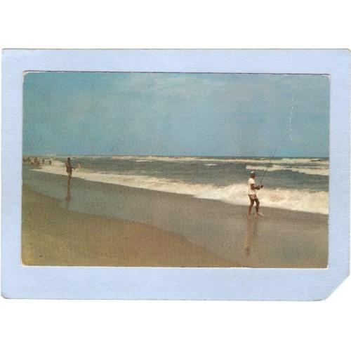 NJ Bay Head Surf Fishing nj_box5~2152
