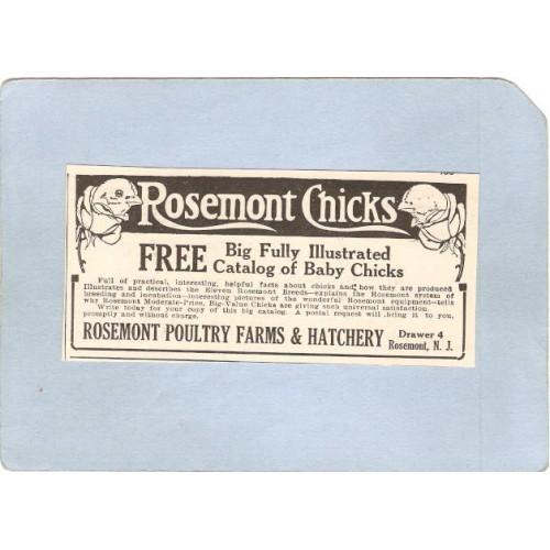 NJ Rosemont Newspaper Ad Mar 18 1922 Rosemont Chicks From Rosemont Poultry~3332