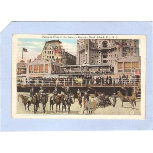 NJ Atlantic City Ponies In Front Of Marlborough Blenheim Hotel nj_box1~73
