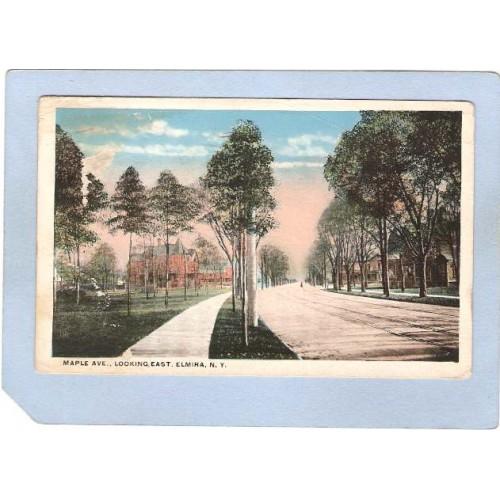 New York Elmira Maple Ave Looking East Tree Lined Street Scene w/Trolley T~1102