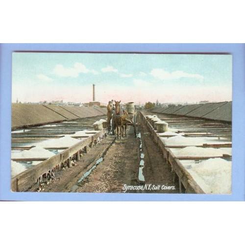 New York Syracuse Salt Covers View Large Bins Containing Salt w/Horse & Wa~138