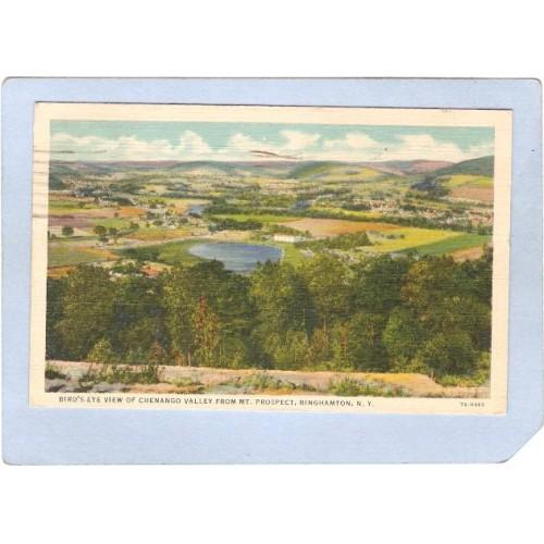 New York Binghamton Birds Eye View Of Chenango Valley From Mt Prospect ny_~528