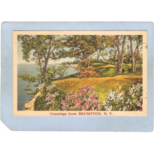 New York Brushton Greetings From Brushton N Y ny_box5~1796