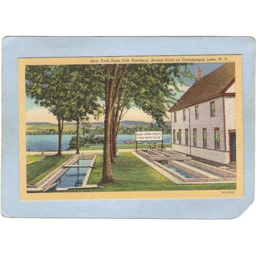 New York Chautauqua New York State Fish Hatchery Bemus Point ny_box5~1870