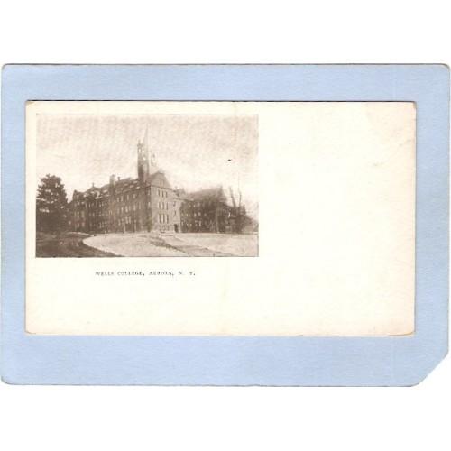 New York Aurora Wells College ny_box2~719