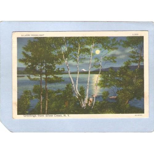 New York Silver Creek Silvery Moonlight Greetings From Silver Creek NY ny_~874