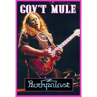 GOV'T MULE Soulshine DVD