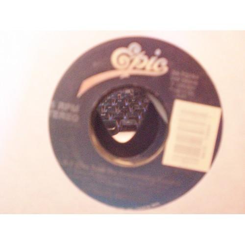 45 RPM: #3919.. GLORIA ESTEFAN - 1-2-3 & HERE WE ARE / EPIC 34-73084 / VG/VG+
