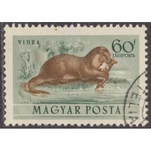 USED HUNGARY #C115 (1953)