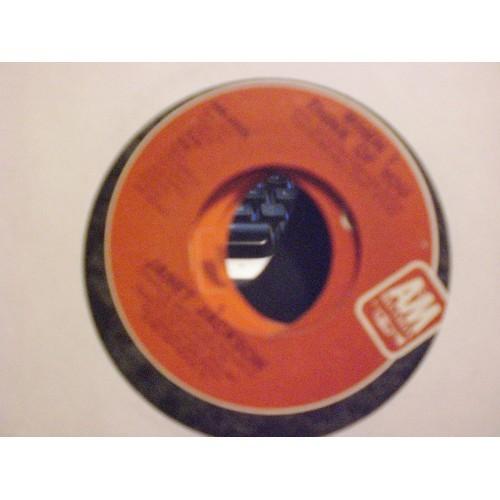 45 RPM R&B: #5546.. JANET JACKSON - WHEN I THINK OF YOU & PRETTY BOY / A&M 2855