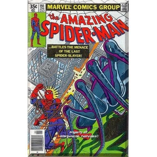 The Amazing Spider-Man #191 (1979) *Bronze Age / Marvel Comics / Spider Slayer*