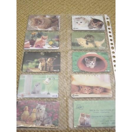 CAT - kitten - cats - kittens ~10 telephone cards~