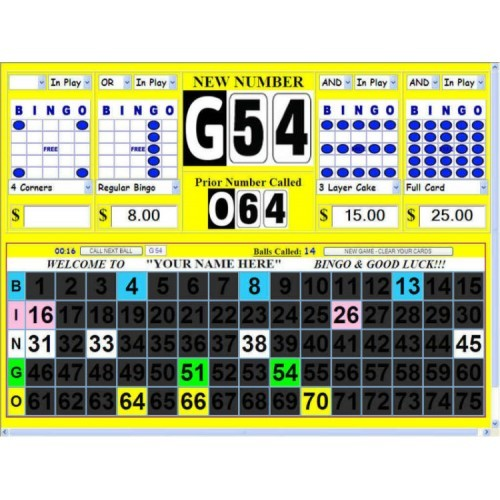 BINGO SOFTWARE - Deluxe Computer Bingo Calling System / Display Flashboard