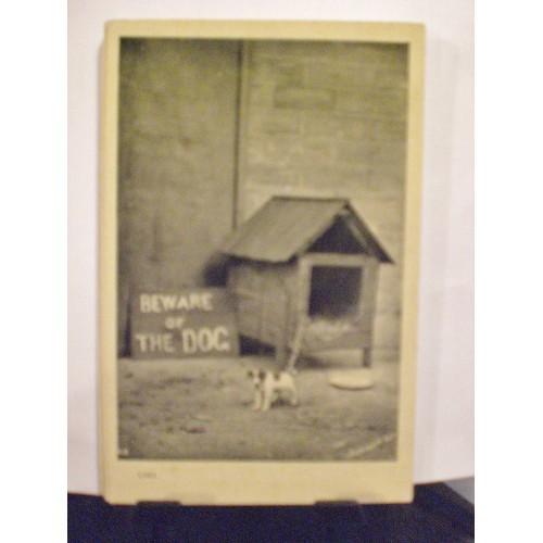 VINTAGE POSTCARD: #37.. BAMFORTH - BEWARE OF THE DOG