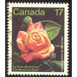 Canada 896 Montreal Rose CV = 0.20$