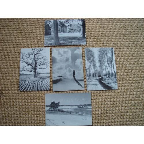 NETHERLANDS - views Veluwe 5 postcards #NL007