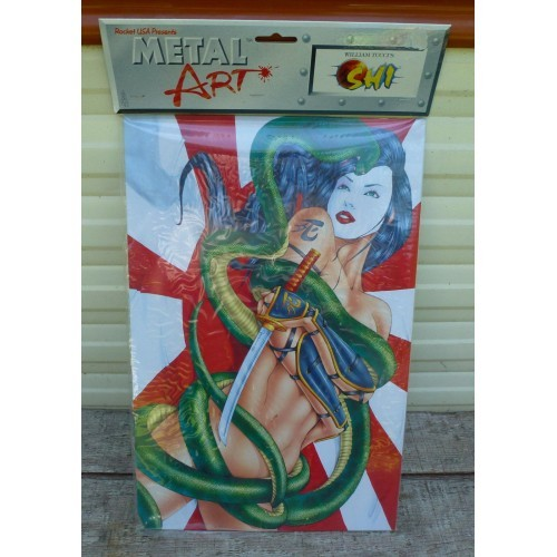 """10"""" X 16"""" Shi Year Of The Serpent METAL ART SIGN POSTER wall pin up girl girly"""